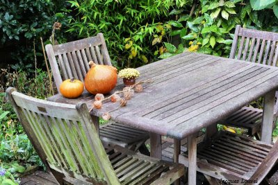 Jardin d'automne
