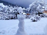 2015, année de la bonnefemme de neige