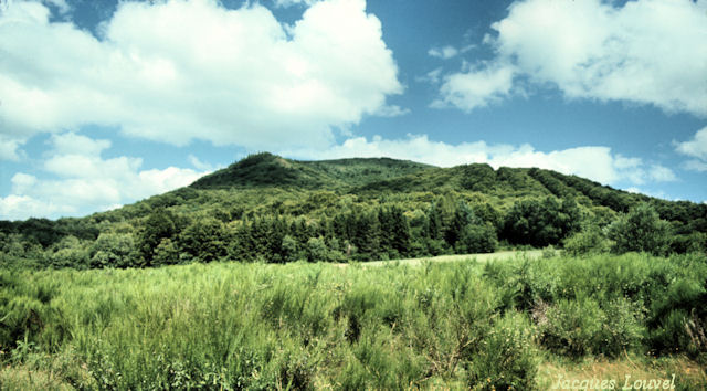 Le puy de Louchadière : égueulement du cratère