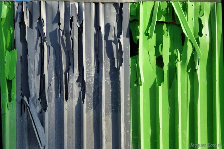 Gris près vert
