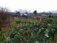 Jardins à Argenteuil et Cormeilles