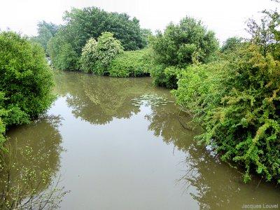 Marais du parc naturel du Cotentin