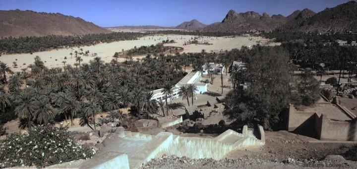 Tassili n'Ajjer : oasis de Djanet