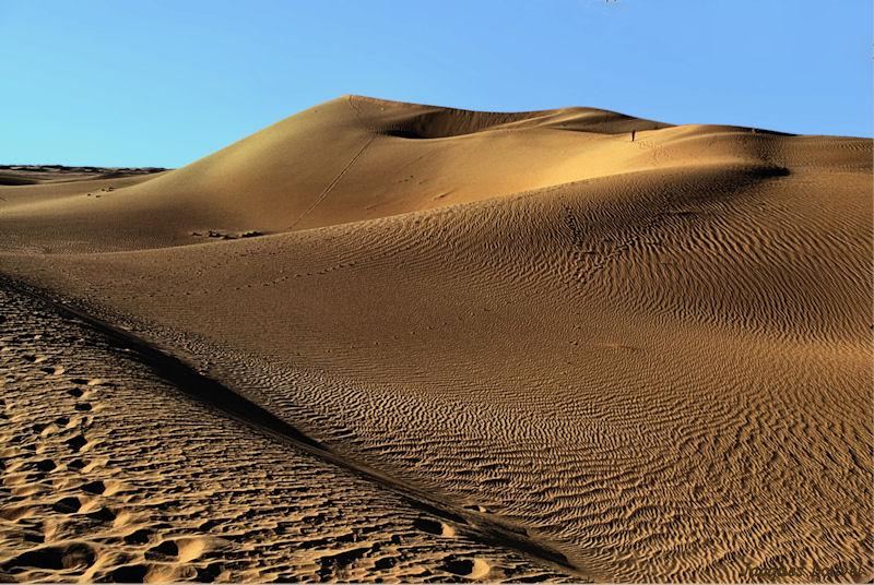 Sahara oriental : les dunes de l'erg Admer