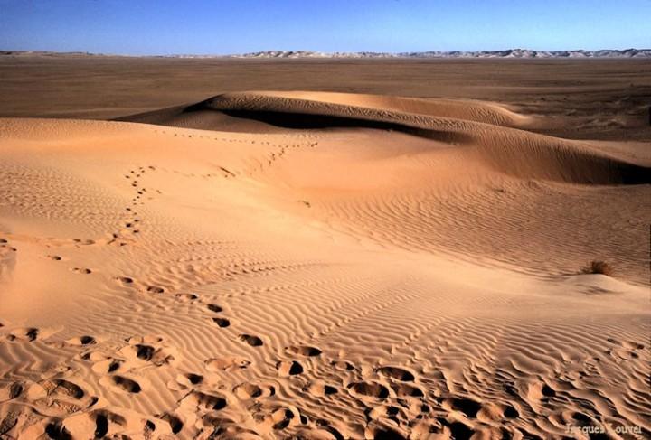 Sahara oriental : les dunes de l'erg Admer - 2