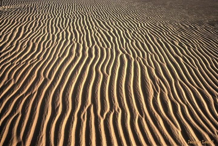 Sahara oriental : les dunes de l'erg Admer - 4