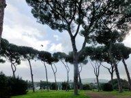 Rome : le Palatin où tout commence ...